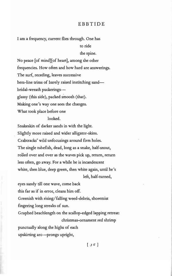 never poems jorie graham purchase